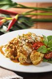 Curry rosso tailandese Fotografia Stock