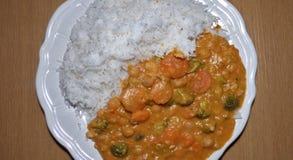 Curry rosso tailandese del vegano - la pianta ha basato l'alimento immagini stock