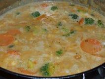 Curry rosso tailandese del vegano - la pianta ha basato l'alimento fotografie stock libere da diritti