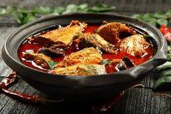 Curry sabroso de los mariscos en pote de arcilla fotografía de archivo libre de regalías
