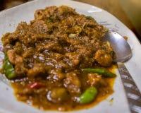 Curry saporito del montone sul piatto bianco fotografia stock