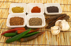 Curry spices 1 Royalty Free Stock Image