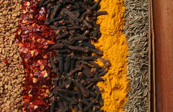 Curry Spices 2 Stock Photos