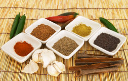 Curry spices 3 Royalty Free Stock Image