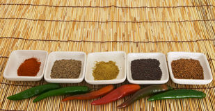 Curry spices 4 Royalty Free Stock Photos