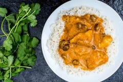 Curry suave con sabor a fruta del pollo con arroz hervido Imagen de archivo libre de regalías