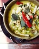 Curry tailandés del estilo con el pollo fotos de archivo libres de regalías