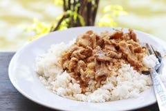 Curry tailandese del panang con riso cotto a vapore Fotografie Stock Libere da Diritti