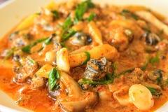 Curry tailandese di stile fotografia stock