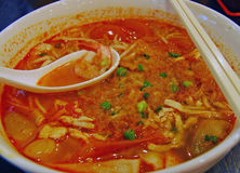 Curry Tom Yam Noodle Stock Photography