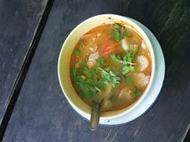 Curry tradizionale Fotografia Stock
