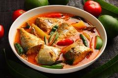 Curry tradizionale del pesce del Kerala Fotografia Stock