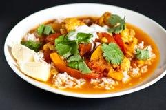 Curry vegetariano Imágenes de archivo libres de regalías