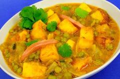 Curry vegetariano del requesón Fotos de archivo libres de regalías