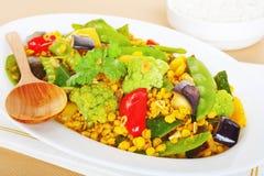 Curry vegetariano indio de la comida de Sambhar Imagenes de archivo
