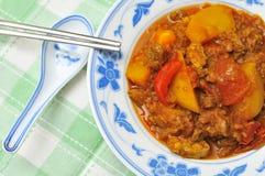 Curry vegetariano picante del estilo chino Imagen de archivo