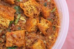 Curry vegetariano tradicional del Malay Fotos de archivo libres de regalías