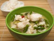 Curry verde del pesce Fotografia Stock Libera da Diritti