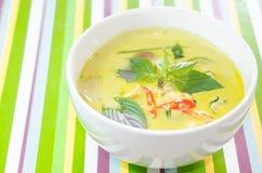 Curry verde del pollo fotos de archivo