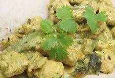 Curry verde tailandese con il pollo Immagini Stock Libere da Diritti