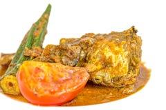 Curry VI del pesce Fotografia Stock Libera da Diritti