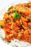 Curry y arroz del pollo Fotos de archivo