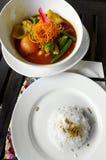 Curry y arroz vegetales Foto de archivo libre de regalías