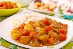 Currych japońscy ryż obraz stock