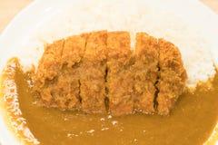 Currych ryż z smażącą wieprzowiną Zdjęcie Stock