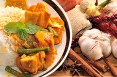 Currych ryż Fotografia Stock