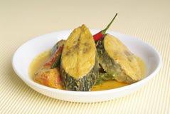 Curryfische Lizenzfreies Stockbild