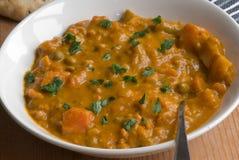 currygrönsak Royaltyfri Bild
