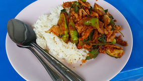 Currygriskött på ris Arkivfoto