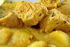 Curryhöna royaltyfria bilder