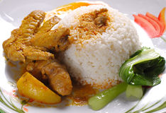 Curryhuhnreis Lizenzfreies Stockbild