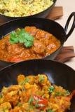 curryindiermål royaltyfri fotografi