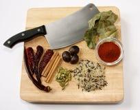 curryingredienser royaltyfri bild