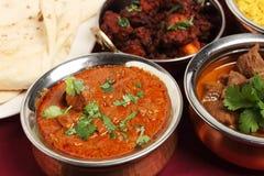 currykashmirilamb arkivfoton