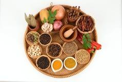 Currykryddor Royaltyfri Fotografi