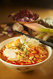 CurryLaksa Noddle Royaltyfri Foto