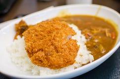 Curryreis mit frittiertem Schweinefleisch Lizenzfreie Stockfotos