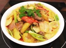 Curryrindfleisch Lizenzfreie Stockbilder