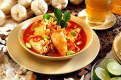Currytioarmad bläckfisk Royaltyfria Bilder