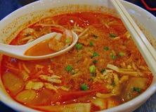 Currytom-Yamswurzel-Nudel Stockfotografie