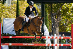 curseur CSIO Barcelone Photo libre de droits