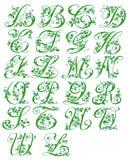 Cursieve bloemen van het alfabet vector illustratie