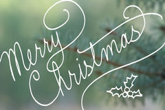 Cursive handwriting typography saying Merry Christmas on blurred blue spruce Christmas tree Royalty Free Stock Photos