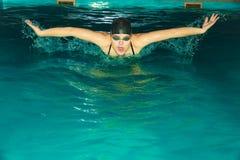 Curso de borboleta da natação do atleta da mulher na associação Foto de Stock Royalty Free