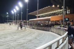 Curso de corrida de cavalos da noite imagens de stock