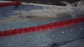 Curso de rastejamento de flutuação de competência do nadador profissional fêmea na piscina filme
